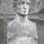 Постер, плакат: Horace