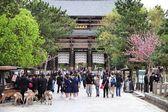 Nara, giappone — Foto Stock