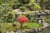 нара, япония — Стоковое фото