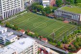 足球培训领域 — 图库照片