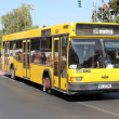 MAZ city bus — Stock Photo
