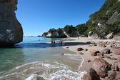 Coromandel, New Zealand — Stock Photo