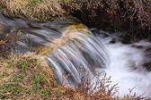 Stream in Colorado — Stock Photo