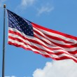 Flag of USA — Stock Photo #32036183