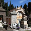 Rome cemetery — Stock Photo #32750841
