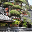 Stock Photo: Architecture in Japan