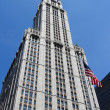 Woolworth Building — Stock Photo