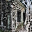 Stock Photo: Ta Prohm
