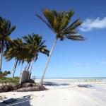 Beach in Cuba — Stock Photo