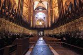 バルセロナ大聖堂 — ストック写真