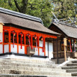 Inari shrine — Stock Photo #39048599