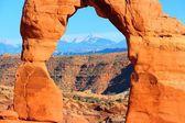 Arco delicado — Foto de Stock