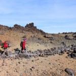 Teide National Park — Stock Photo