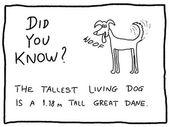 Dessin animé chien — Vecteur