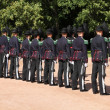 Oslo Royal Guards — Stock Photo