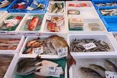Tsukiji Fish Market — Stock Photo