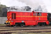 Rode trein — Stockfoto