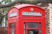 Londra telefon — Stok fotoğraf