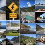 New Zealand photos — Stock Photo #50539803