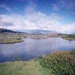 冰岛 — 图库照片 #50709789