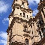Malaga Cathedral — Stock Photo #50978245