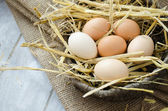 Brown hen eggs in a basket — Stock Photo