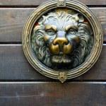 Bakır aslan heykeli kapı — Stok fotoğraf #25971881