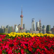 Red morning glory prospects Shanghai landmark city buildings sky — Stock Photo #25974085