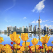Yellow tulips prospect of Shanghai the Bund's landmark skyline — Stock Photo