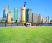 Landscape grass prospects the Shanghai Lujiazui city buildings — Stock Photo