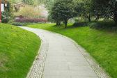 Ruta bordeada de árboles en el parque — Foto de Stock