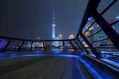 Shanghai bund skyline at night city landscape — Stock Photo