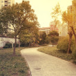 Forest paths in city's residential district — Stock Photo #26916257