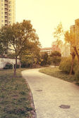 Forest paths in the city's residential district — Stock Photo