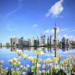 White tulips prospect of Shanghai the Bund's landmark skyline — Stock Photo
