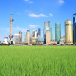Shanghai Lujiazui city of field landscape — Stock Photo