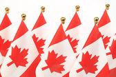 Flaggor i kanada — Stockfoto