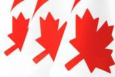 Canada vlaggen — Stockfoto