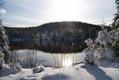 Winter scene abroad a lake — Stockfoto