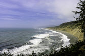 Beach of Trinidad Head — Stock Photo