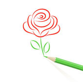 Hand drawn rose — Stock Vector
