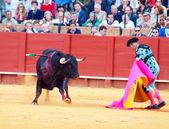 SEVILLA -MAY 20: Novilladas in Plaza de Toros de Sevilla. Uniden — Stock Photo
