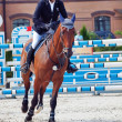 Stock Photo: SAINT PETERSBURG-JULY 08: Rider Urmas Raag on Axel du beaumont i