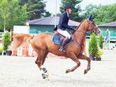 SAINT PETERSBURG-JULY 08: Rider Gunnar Klettenberg on Bingo in t — Stock Photo