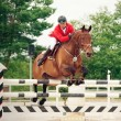 Equestrian jumping sport — Stock Photo