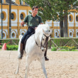 Jerez-17 MAY: rider on spanish white horse in The Royal Andalucian School of Equestrian Art - Stock Photo