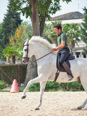 Jerez-17 MAY: rider on spanish white horse in The Royal Andalucian School of Equestrian Art — Stok fotoğraf