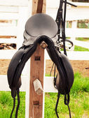 Dressage saddle at the bracket. outdoor — Stock Photo