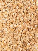Lamination barley background. close up — Stock Photo