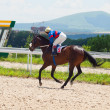 Stock Photo: PYATIGORSK,RUSSI- JULY 7: race for Big prize OaKS. Mare Sa